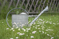 Metal watering can in spring garden Stock Photo