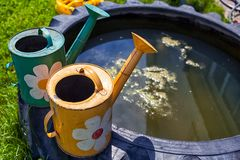 Metal watering cans stock photos