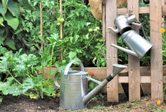 Metal watering cans Royalty Free Stock Photos