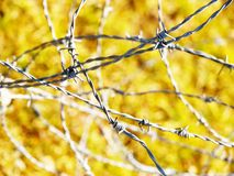 The metal wire on green background Royalty Free Stock Image