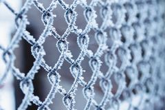 Metal wire-netting covered with frost in winter stock images