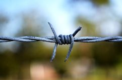 Barbed wire closeup royalty free stock photography