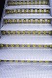Metali schodków światło Obrazy Stock