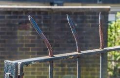 Metallährentragender Zaun Stockbilder
