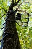 Metall Hängning-på att jaga Treestand och att klättra pinnar royaltyfri fotografi