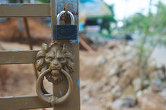 Metall lion head and lock Stock Photography