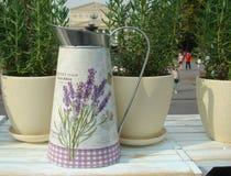 Metall som bevattnar kan för att bevattna bland olika blommor och växter royaltyfria foton