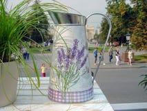Metall som bevattnar kan för att bevattna bland olika blommor och växter arkivfoto