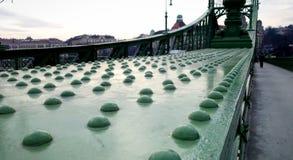 Metallarbete på Liberty Bridge, Budapest royaltyfria bilder