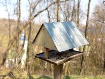 Metallförlagematareträd för fåglar i skogen royaltyfri foto