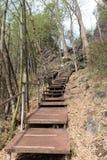 Metallgehweg, zum auf und ab den Hügel zu gehen Stockbilder