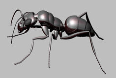 Metallic Ant. Insect of the family Formicidae, order Hymenoptera, with anodised alloy exoskeleton Stock Photo