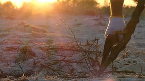 Axe cuts the twigs of a tree branch on seashore at sunset in slo-mo. A metallic axe in the male hands covered with white gloves cuts the twigs of a tree branch stock footage