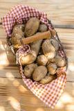 Metallic basket full of fresh new potatoes. Close-up of a metallic basket full of fresh new potatoes, shot from high angle Stock Image