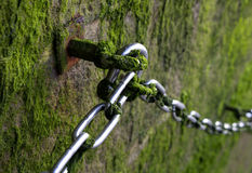 Metallic chain on stone wall with moss Royalty Free Stock Photo