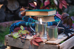 Metallic cups, books and plaids Royalty Free Stock Photos