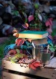 Metallic cups, books and plaids, vertical Stock Photos