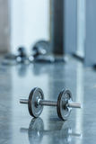 Metallic dumbbell lying on floor in sports center Stock Photography
