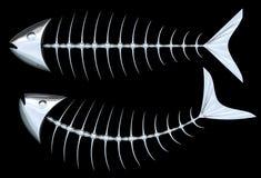 Metallic Fish Skeleton Royalty Free Stock Image