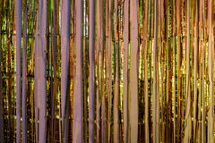 Metallic foil fringe party decoration reflecting colorful lights. Stock Photo