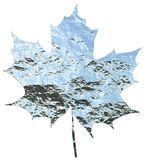 Metallic maple leaf Royalty Free Stock Photography