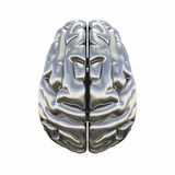 Metallic model of human brain Stock Images