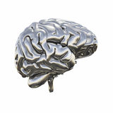 Metallic model of human brain Stock Image
