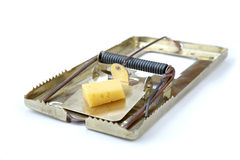Metallic mousetrap with cheese Royalty Free Stock Images