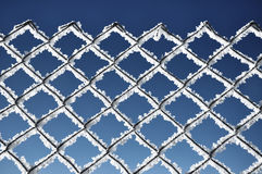 Metallic net covered with hoarfrost. Extreme cold weather concep Stock Photography