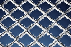 Metallic net covered with hoarfrost. Extreme cold weather concep Royalty Free Stock Images