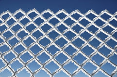 Metallic Net Covered With Hoarfrost. Extreme Cold Weather Concep Stock Image