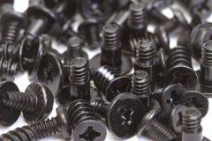 Metallic screws royalty free stock photo