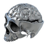 Metallic Skull Stock Photo