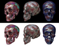 metallic skull Royalty Free Stock Image