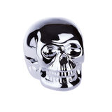 Metallic skull Stock Photography