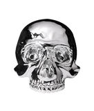 Metallic skull.with path. Metallic skull isolated.with path Royalty Free Stock Images