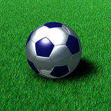 Metallic Soccer Ball on Grass Royalty Free Stock Images