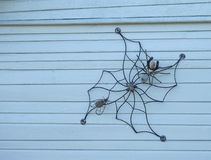 Metallic spider net, spider and fly Royalty Free Stock Photos