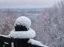 Metallis excepté la cosse de modèle avec la neige photographie stock libre de droits