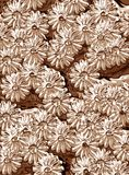 Metallische Blumen Lizenzfreies Stockbild