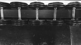 Metallisk hantel i svartvitt i rad Arkivbild