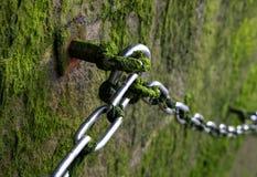 Metallisk kedja på stenväggen med mossa Royaltyfri Foto