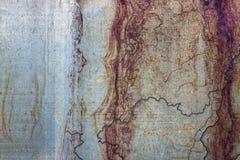 Metallisk rostad målad yttersida som abstrakt bakgrund royaltyfri bild