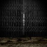 metalliskt gammalt för dörr Royaltyfri Foto