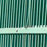 Metalliskt staket som målas med grön målarfärg som en bakgrund Royaltyfria Bilder