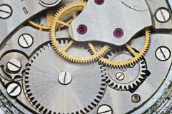 Metallkugghjul i urverk, begreppsteamwork Royaltyfria Foton