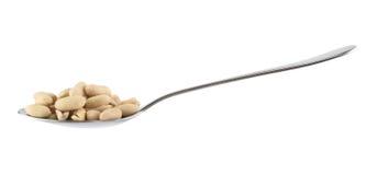 Metalllöffel voll von den Erdnüssen lokalisiert Lizenzfreie Stockbilder
