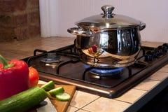 Metallo che cucina vaschetta sul bruciatore a gas Fotografia Stock Libera da Diritti