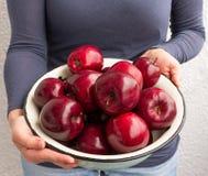 Metallschüssel mit frischen roten Äpfeln stockbilder