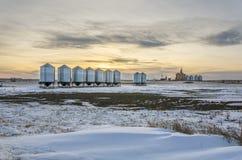 Metallschuren en graanschuuren op het sneeuw de wintergebied royalty-vrije stock fotografie